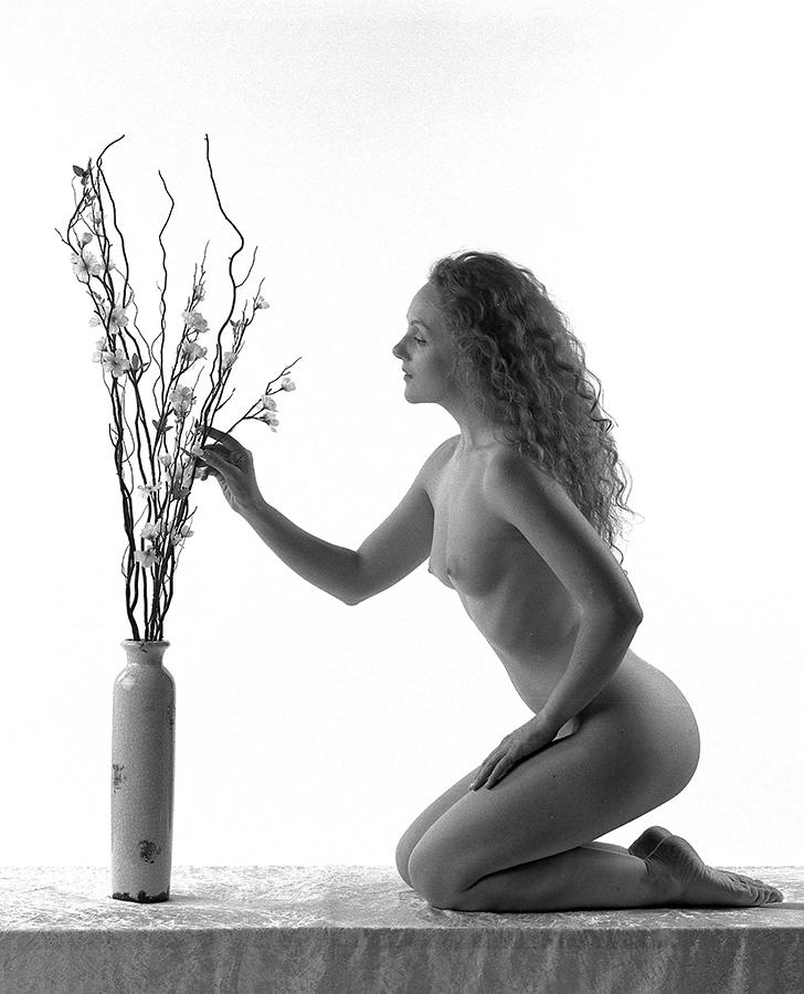Flower-arranging-by-John-Marshall