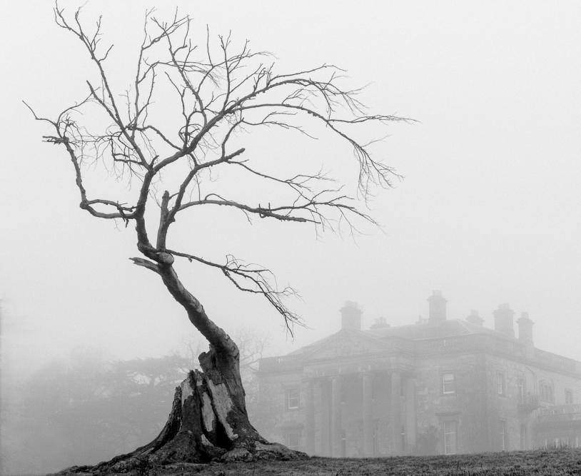 05 Gaddesdon Gothic by Jim Turner
