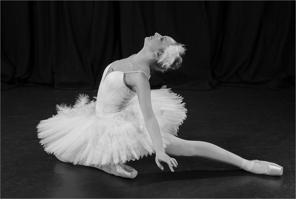 32 Swan Lake by Rob Harley