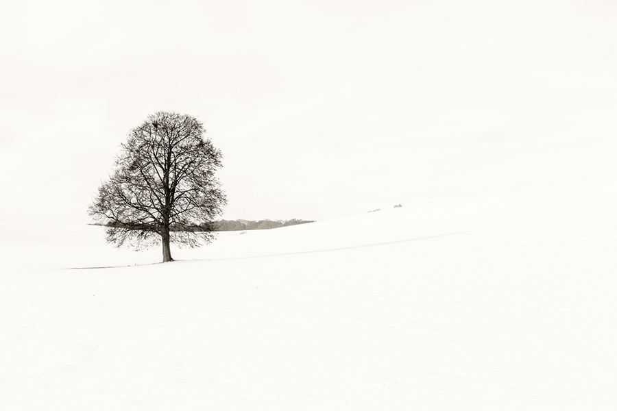 Whiteout No. 1 by Jim Turner