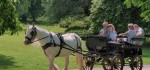 26-ONE-HORSEPOWER-TAXI